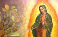 Oración a la Virgen de Guadalupe (1)